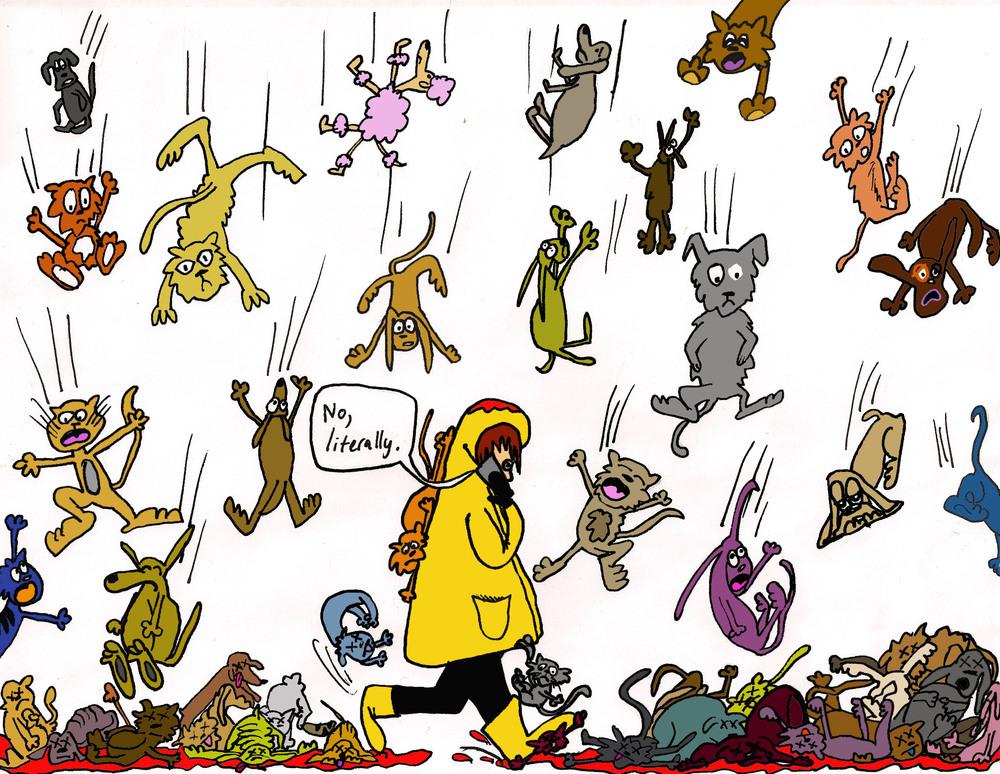 08-CatsandDogs.jpg