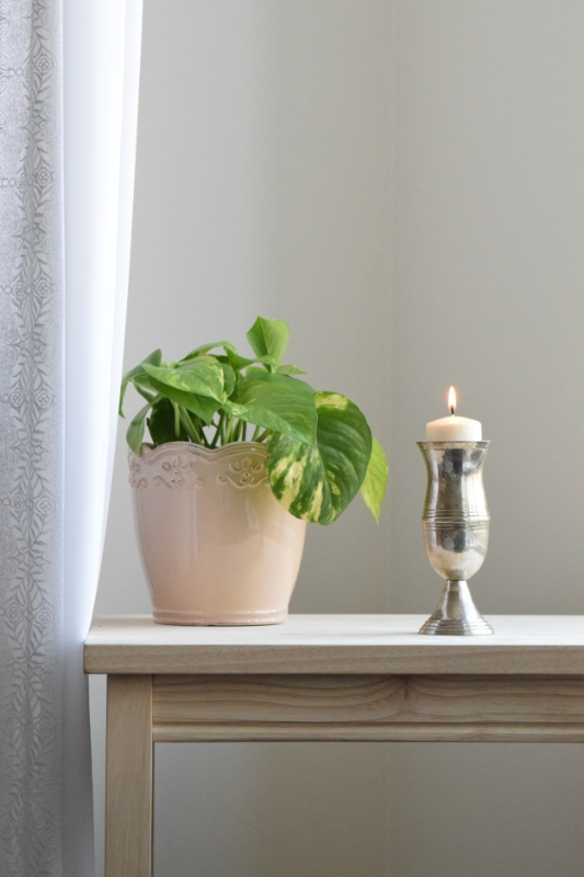 Spruce up a forgotten corner with a plant and a great smelling candle!