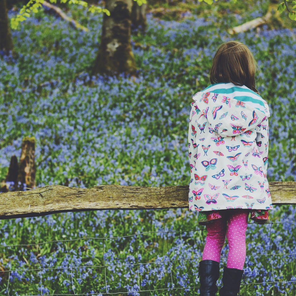 Admiring the Bluebells at Dinefwr in her new Hatley raincoat.