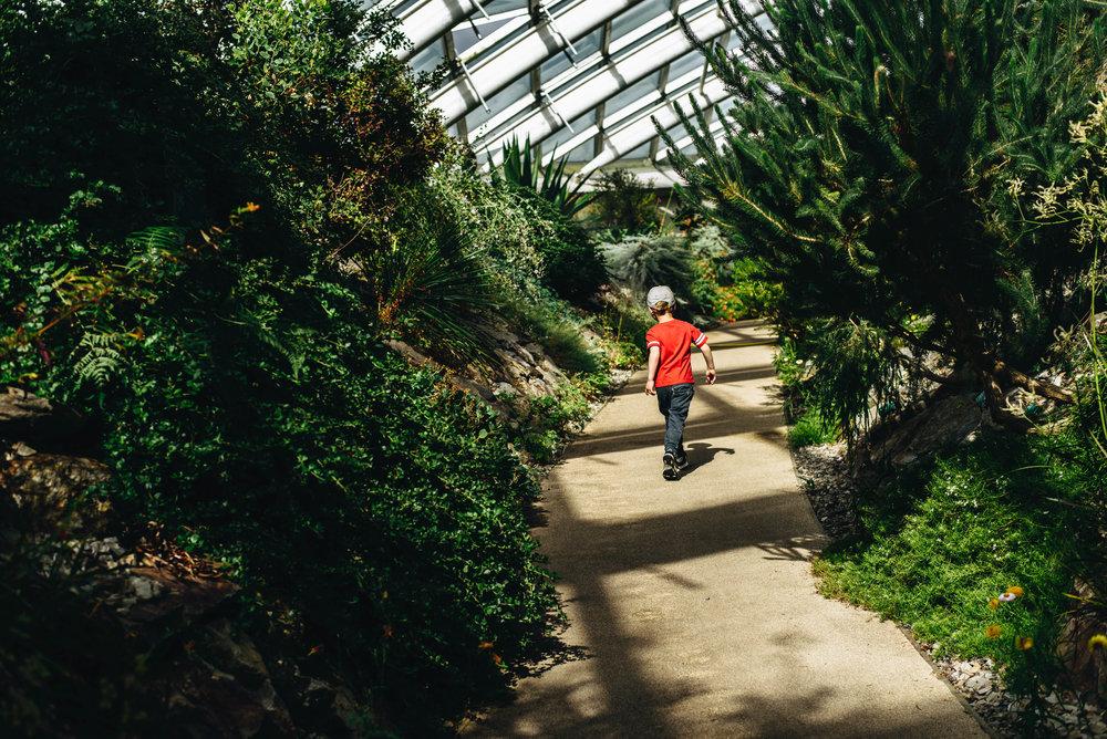 BotanicGardens-0212.jpg