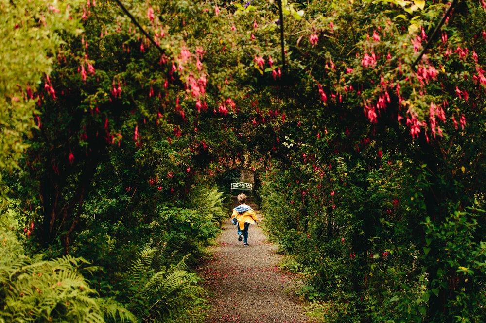 Gardens at Penrhyn Castle