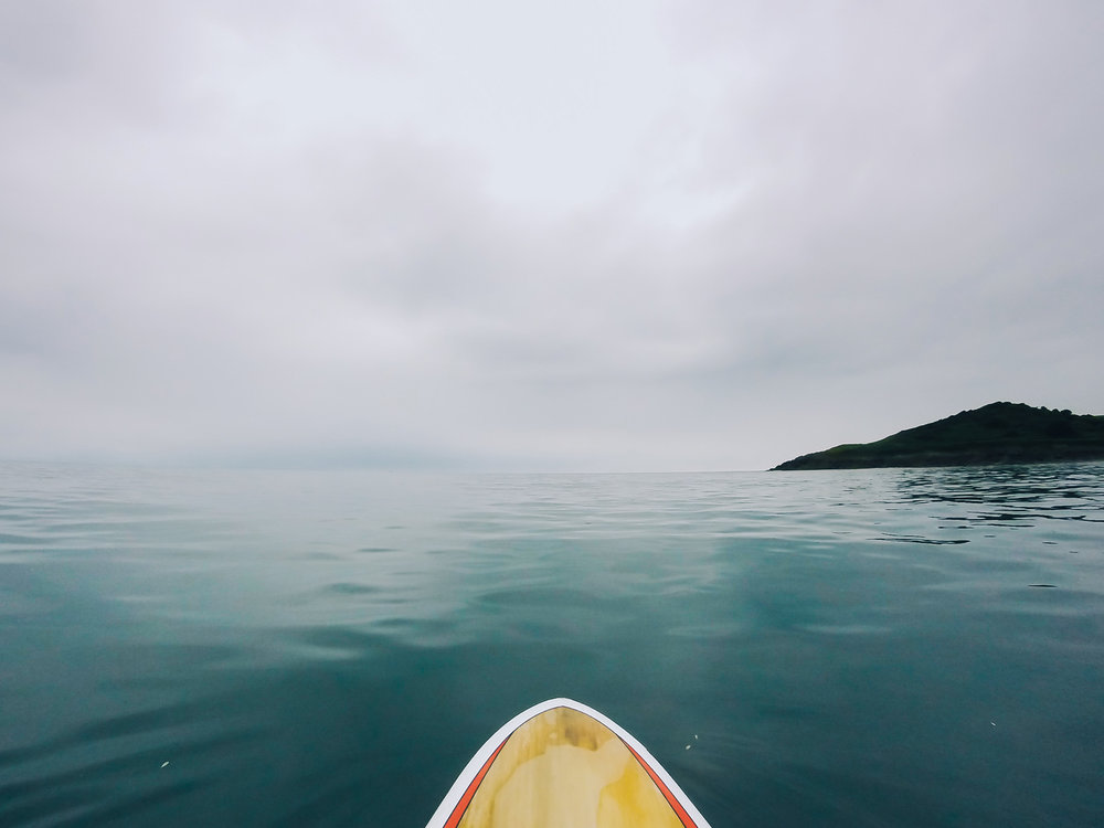 Why not have a go on a Stand up Paddle board?