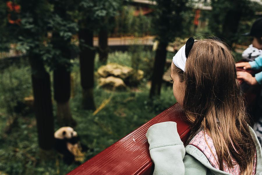 OurBeautifulAdventure-TravelBlog-OuwenhandsDierenpark-Holland-8518.jpg