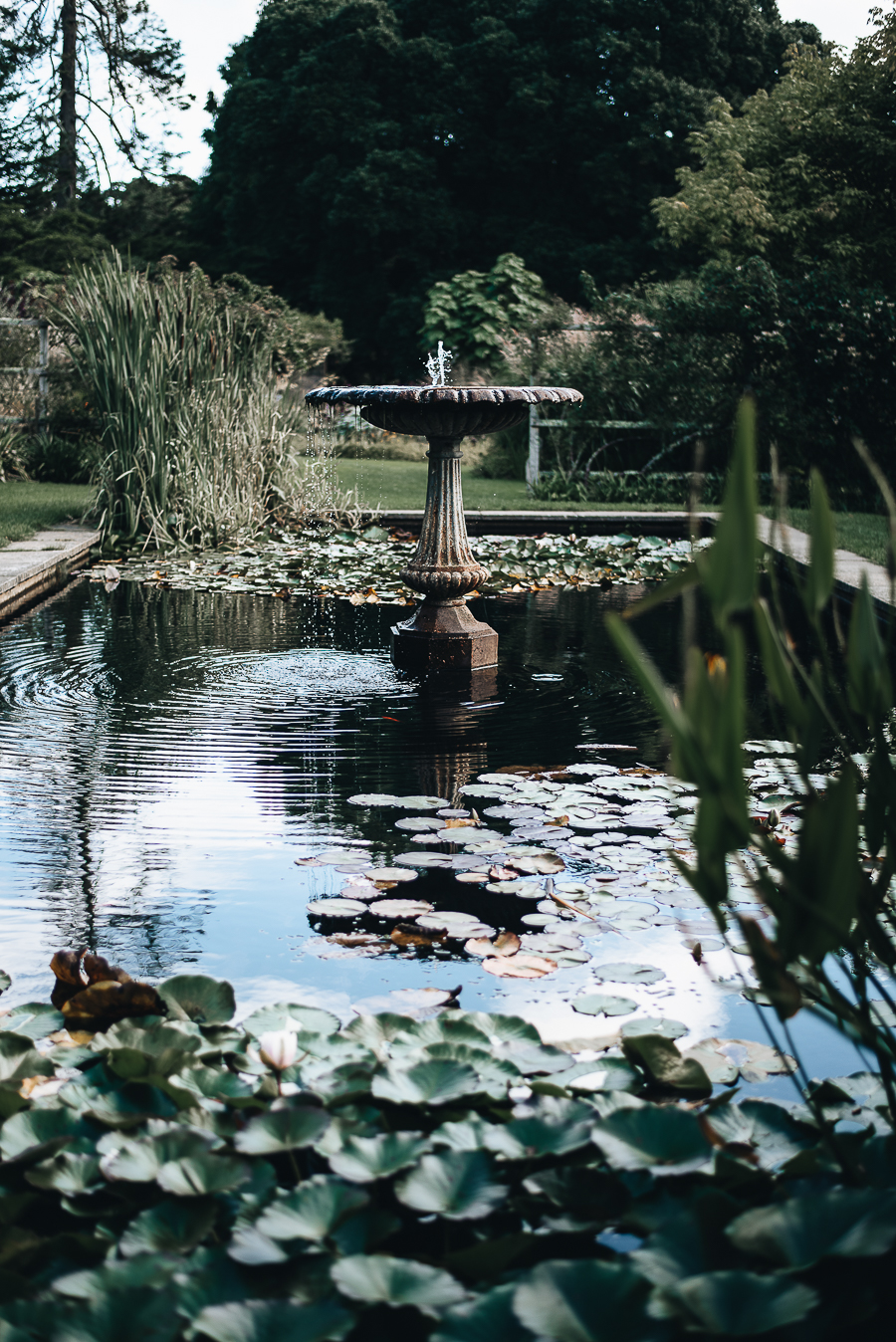 OurBeautifulAdventure-PictonGardens-4838.jpg