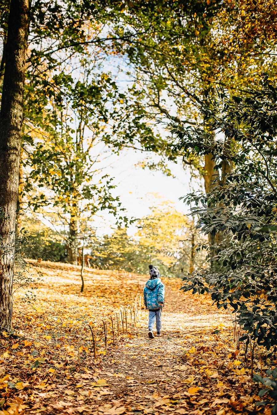 OurBeautifulAdventure-GettingOutdoorsinWales-October-websize-0306.jpg