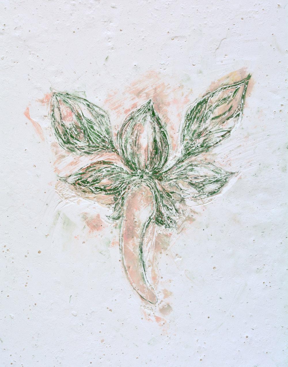 Solanne_Bernard-Shy_Blooms2-1-2-low.jpg