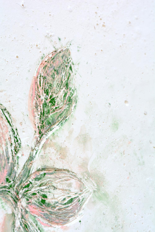 Solanne_Bernard-Shy_Blooms2-3-4-low.jpg