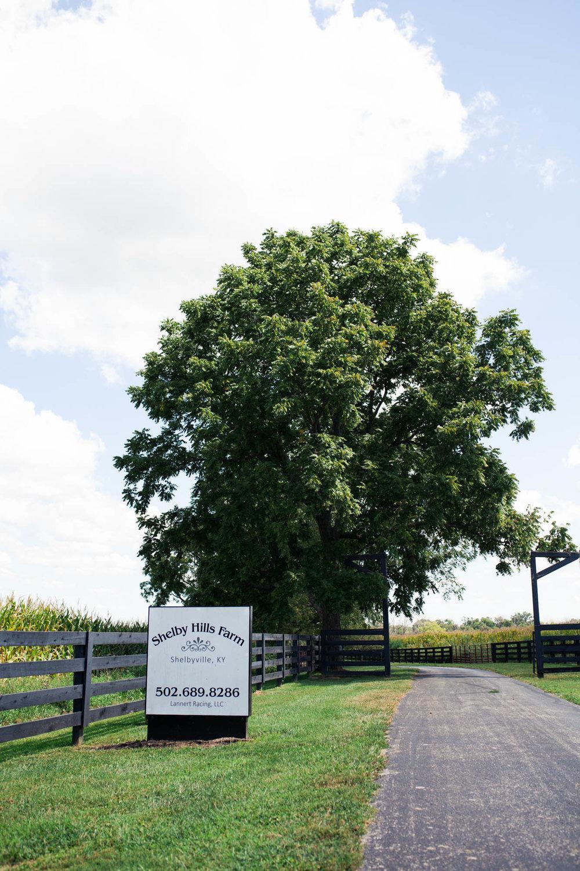 shelbyhillsfarm-35.jpg