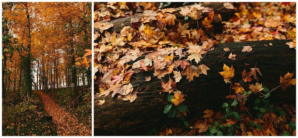 trent.and.kendra.photography.autumn.kentucky.foxhollow-30.jpg