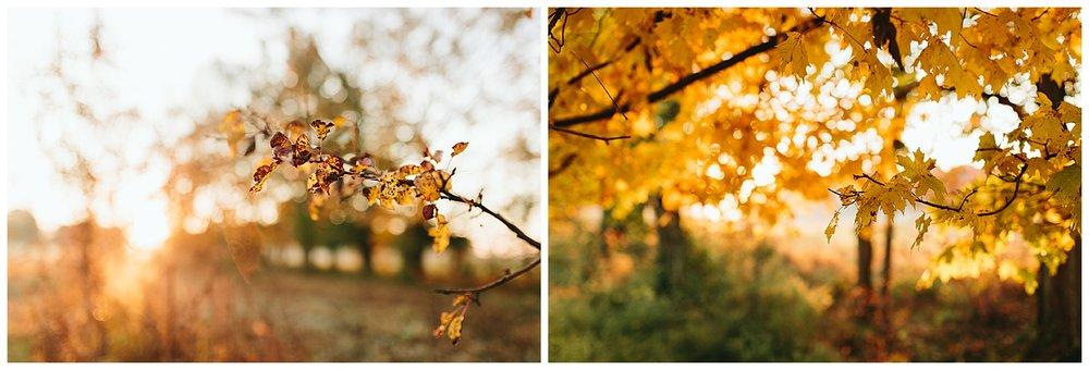 trent.and.kendra.photography.autumn.kentucky.foxhollow-39.jpg