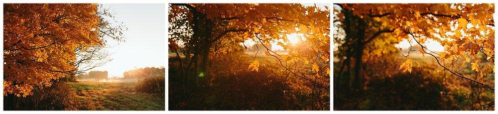 trent.and.kendra.photography.autumn.kentucky.foxhollow-41.jpg