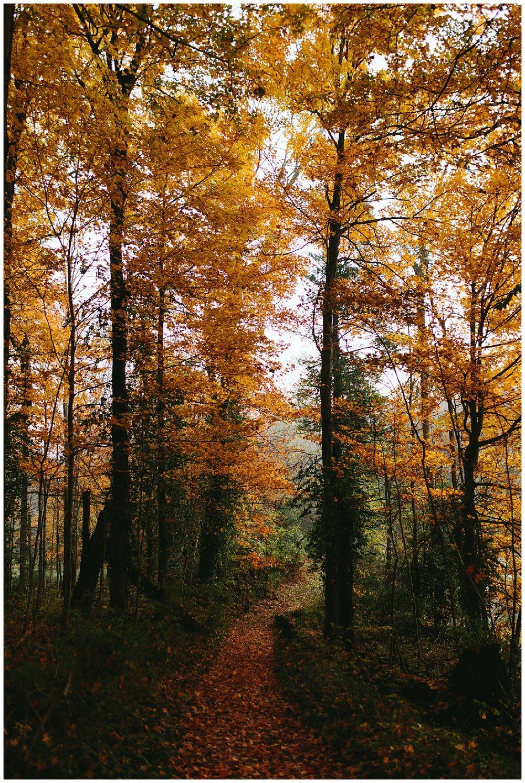 trent.and.kendra.photography.autumn.kentucky.foxhollow-32.jpg