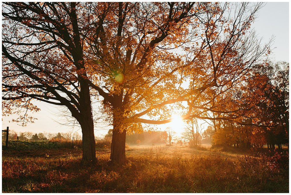trent.and.kendra.photography.autumn.kentucky.foxhollow-46.jpg
