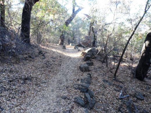 PeterStraussRanch_trail1.JPG