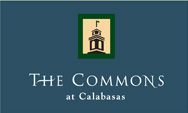 Commons_logo.jpg