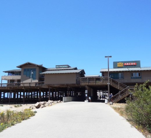The bike path goes under the Ventura Pier.