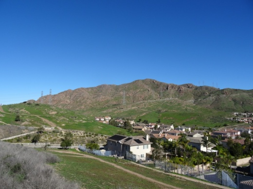View of the Edison power lines going up Conejo Mountain from Park View Trail.