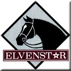 Elvensar Riding Academy