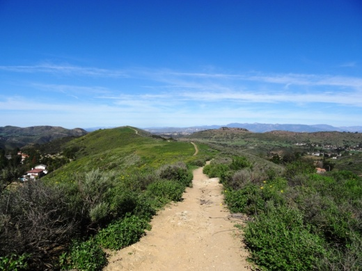 After the winter rains it greens up nicely here and other Conejo Valley trails.
