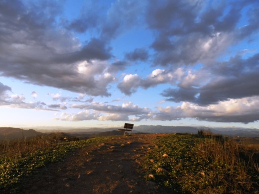 The bench at the top of Tarantula Hill faces west towards Newbury Park.
