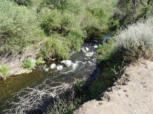 This creek parallels the Hill Canyon Trail
