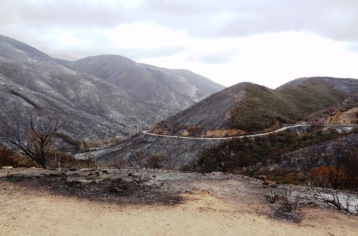 View of Big Sycamore Canyon after the Springs Fire of 2013.  two years later, the landscape is gradually changing back.