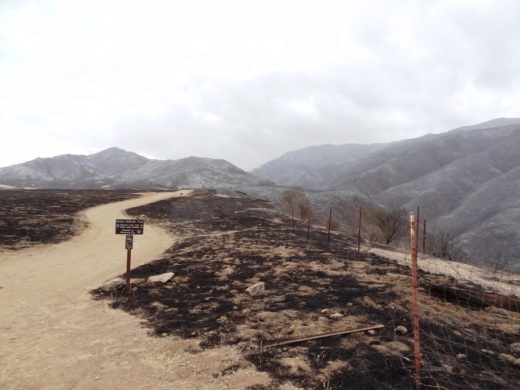 Boney Mountain Trail sign in Rancho Sierra Vista post-Springs fire 5/5/13.
