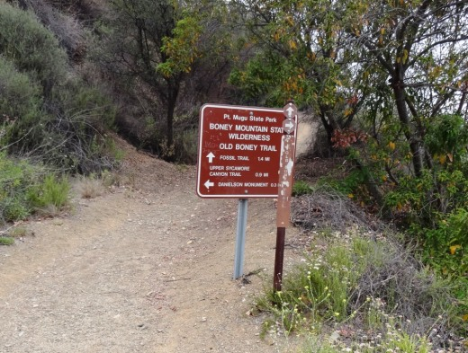 Here's the sign at the juncture of the Danielson Road trail and the Old Boney Trail turnoff, about .3 mile away from the Danielson Monument.