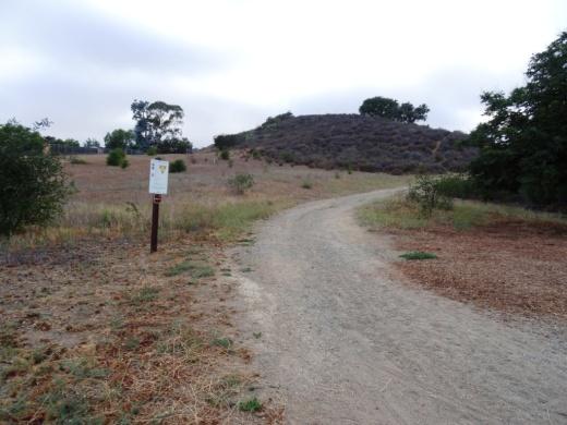 Potrero Ridge Trail trailhead off of Wendy Drive