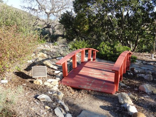 Japanese Tranquility Garden is back here (looks like the bridge is in need of some paint!)