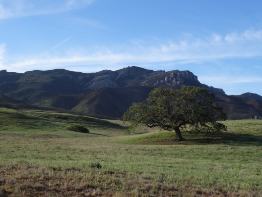 View of Boney Mountain from the Rancho Sierra Vista/Satwiwa area.