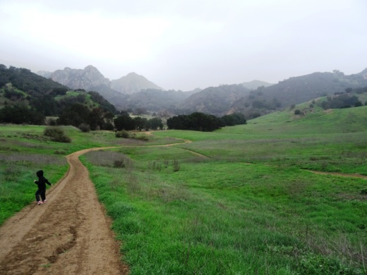 The scenery along the Grassland Trail can be quite beautiful, particularly after the rainy season.