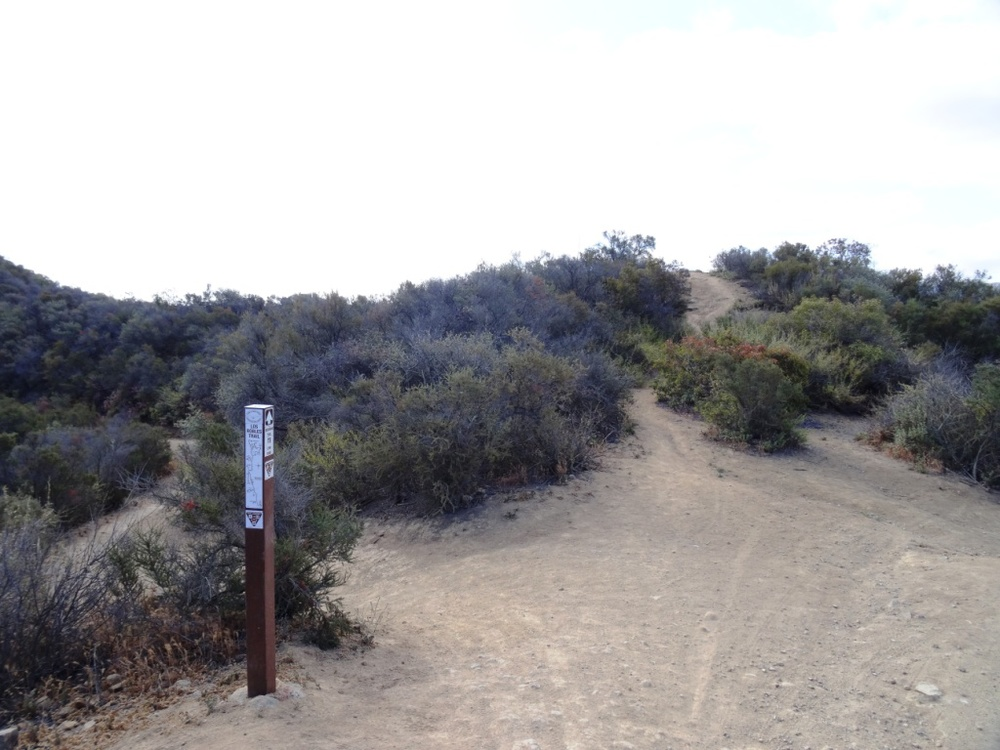 Facing southeast from Angel Peak, head up this short, moderately steep trail.