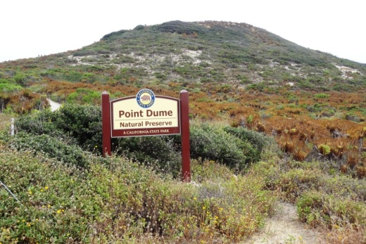 PointDumeSign.jpg