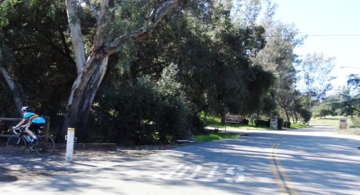The Ojai Trail runs parallel to Ventura Ave/Ojai Ave.