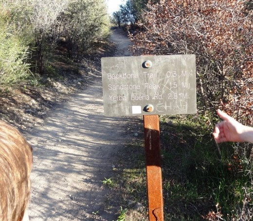 The sign telling us we are (finally) almost at the Backbone Trail, which will take us to Sandstone Peak and back to our car on Yerba Buena Road