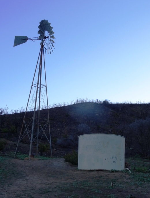 The old windmill at the northeast corner of the Satwiwa Loop Trail (Upper Loop). (Windmill was   knocked down by high winds in December 2016   and is still down as of September 2018).