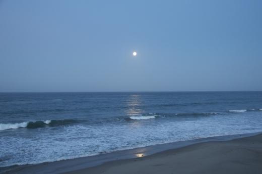 Moonset_Demeter3.17.14.jpg
