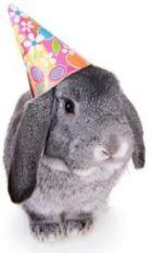 BirthdayBunny160px.jpg