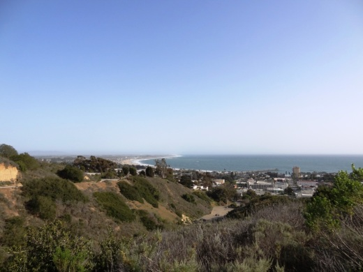 A view from the Ventura Botanical Gardens Demonstration Trail