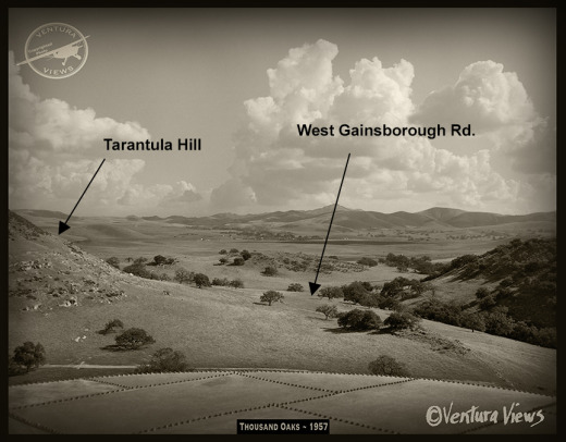 7254 Thousand Oaks 1957 ©Venturaviews.jpg