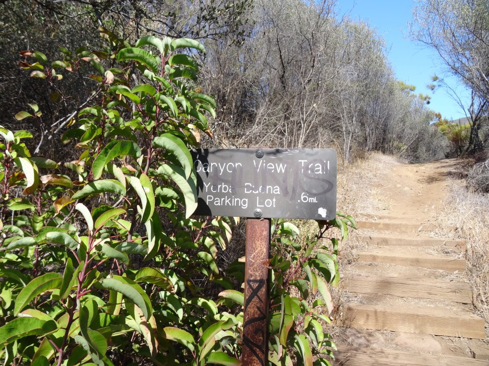 About .4 mile into the hike, you'll see see this sign for the canyon view trail, which takes you .6 mile up to a small parking area off of Yerba Buena Road (about halfway between Circle X Ranger Station and Sandstone Peak trailhead)