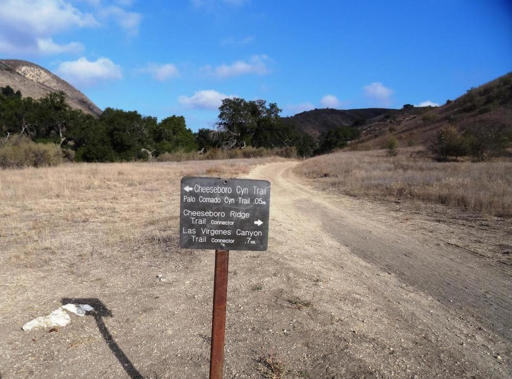 From the main Cheeseboro Canyon Trail, this juncture leads you to the south entry point to the Palo Comado Trail.