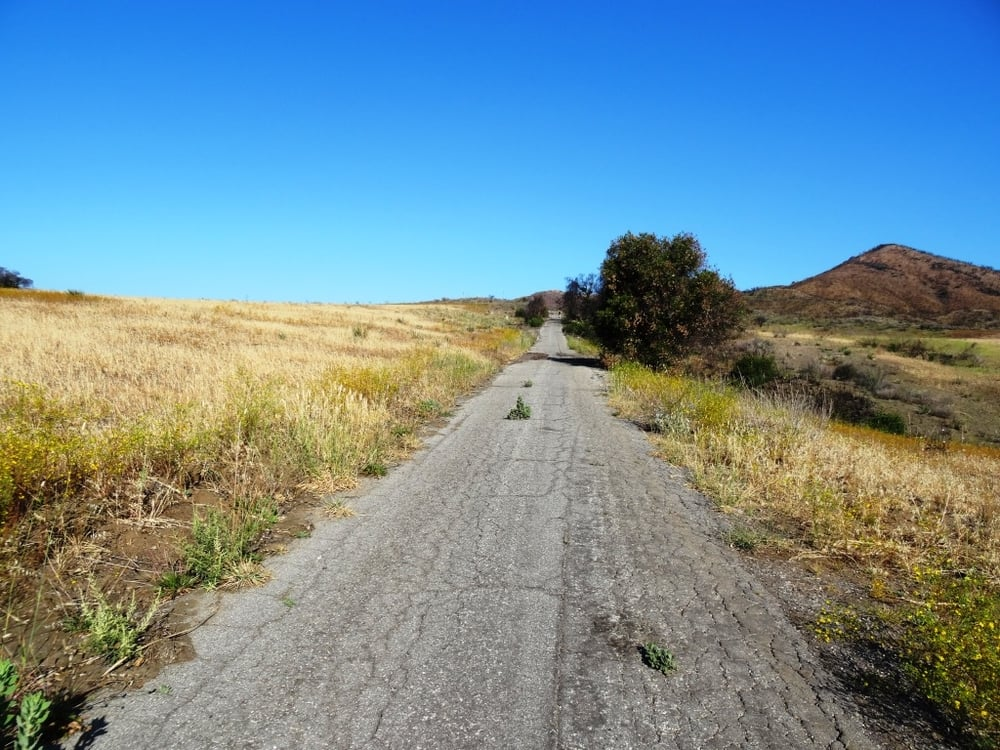 This is one section of Ranch Center Road. As you can see, this is a pretty old road that was used by the ranchers who lived here before the land was acquired by California State Parks.