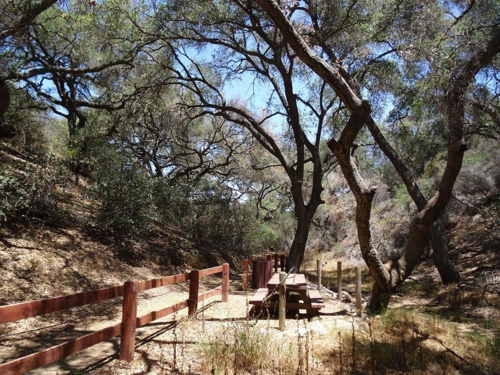 Picnic trails and shade abound at the Oak Creek Canyon Interpretative Trail.