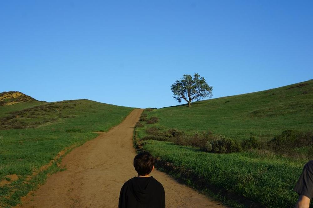 This hill in the Lang Ranch/Woodridge Open Space at the Autumn Ridge Trail is a bit daunting but worth the climb