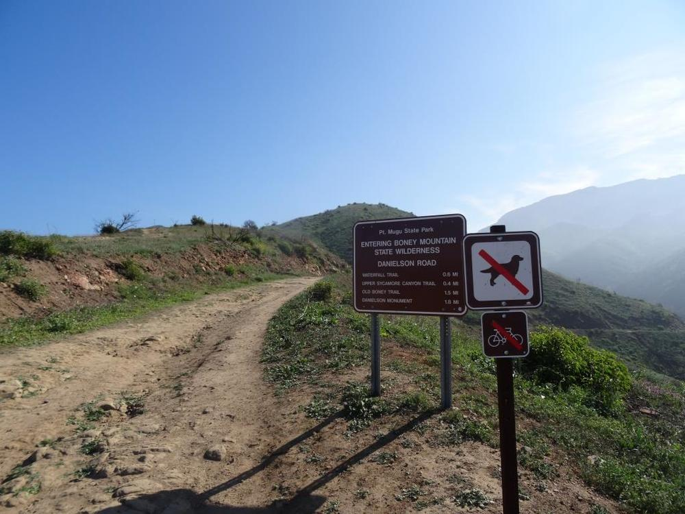 Canines are not allowed in the backcountry trails of Point Mugu State Park, including the Boney Mountain Wilderness.