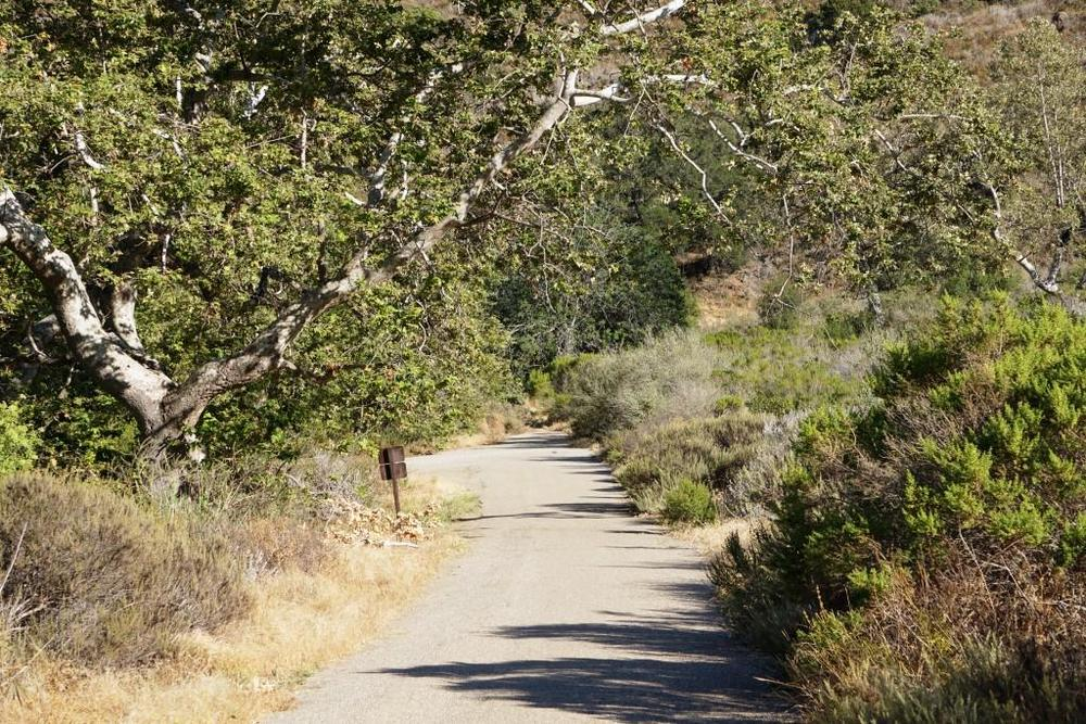 CLICK iMAGE FOR DETAILS ABOUT SOLSTICE CANYON IN THE SANTA MONICA MOUNTAINS
