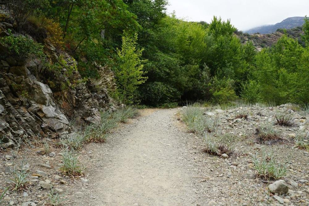 Some sections of the trail are perfectly flat and scenic. Most of the trail you will hear Santa Paula Creek