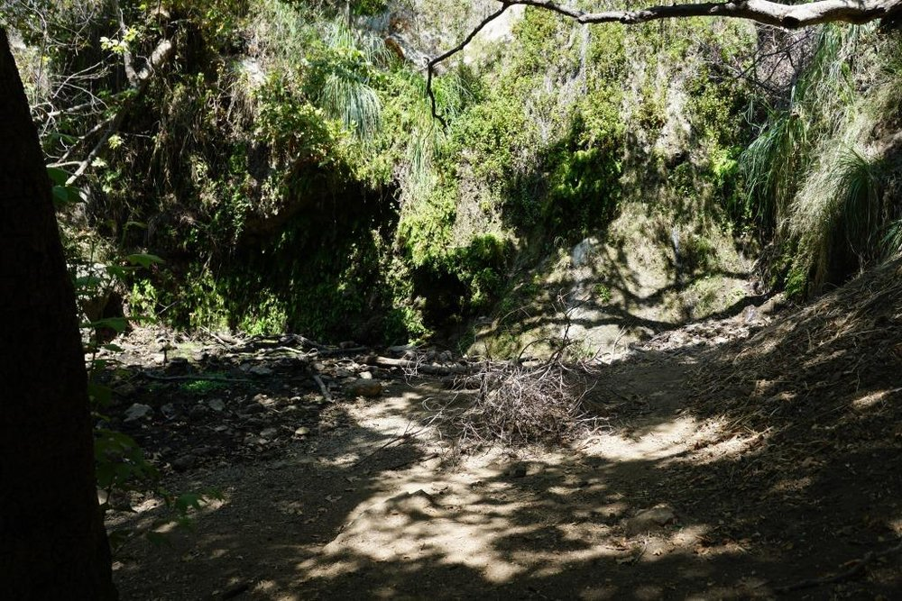 Believe it or not, this is the end of the trail, where the waterfall flows after the rainy season. In late August pictured here, there is a dribble of water flowing into the creek.